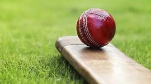 Somerset Cricket One Day Membership
