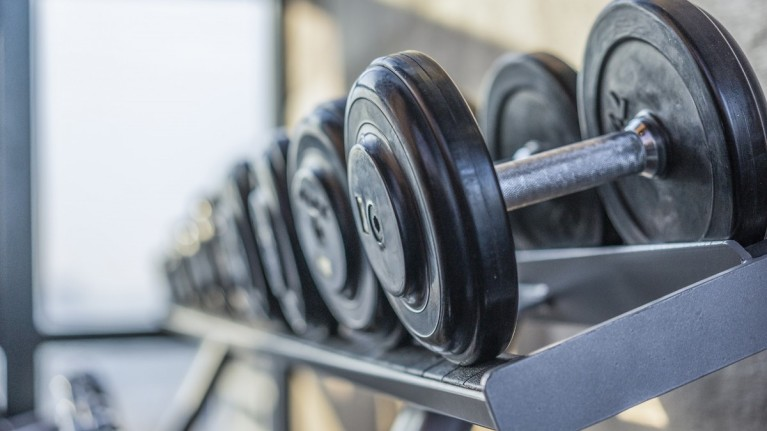 Lincoln CSSC | Fitness Subsidy