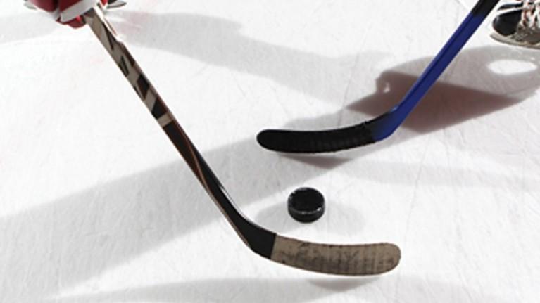 Sheffield Steelers Ice Hockey - Discounted Tickets